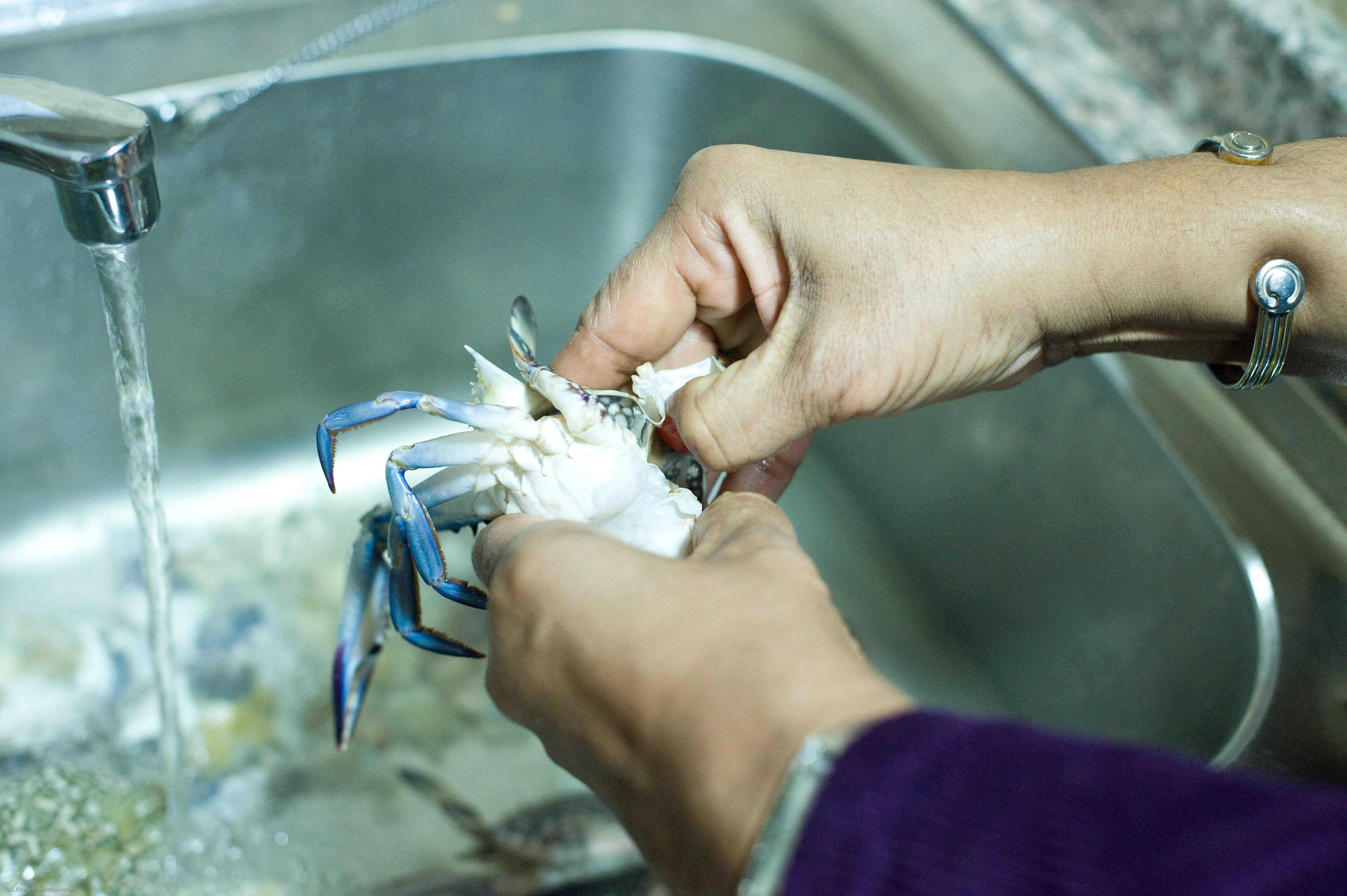 how to clean crab in nigeria